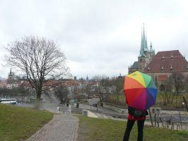 Blick auf Erfurt während einer Exkursion